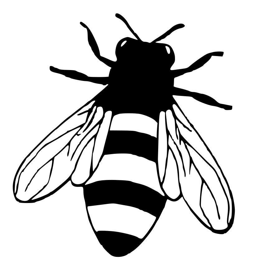Line Art Bee : Honey bee die cut decal car window wall bumper phone laptop