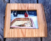wood picture frame, 5 x 7 photo frame, rustic, live edge, wildlife photo, handmade, country primitive, ash, cardinal