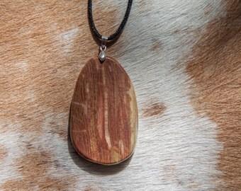Petrified Wood Pendant Necklace
