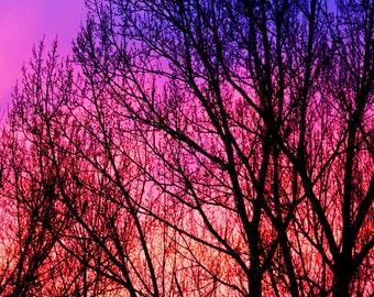 Beautiful Arizona Sunset 2