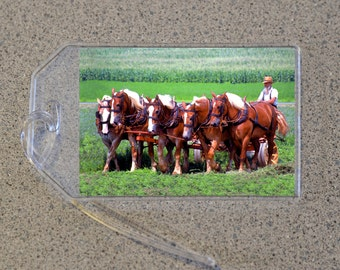 Amish Horses Luggage Tag Name Address Bag Tags, Farmer Brown White Horse Green Field Equestrian Animal Wildlife Mennonite Americana