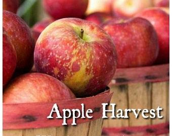 Apple Harvest Candle Fragrance Oil ~ 1oz Bottle