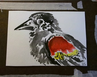 Red-Winged Blackbird: Original watercolor