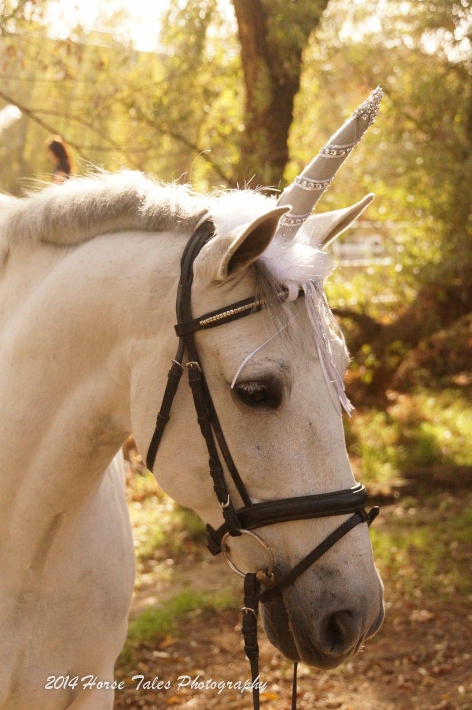 Realistic Horse Costume
