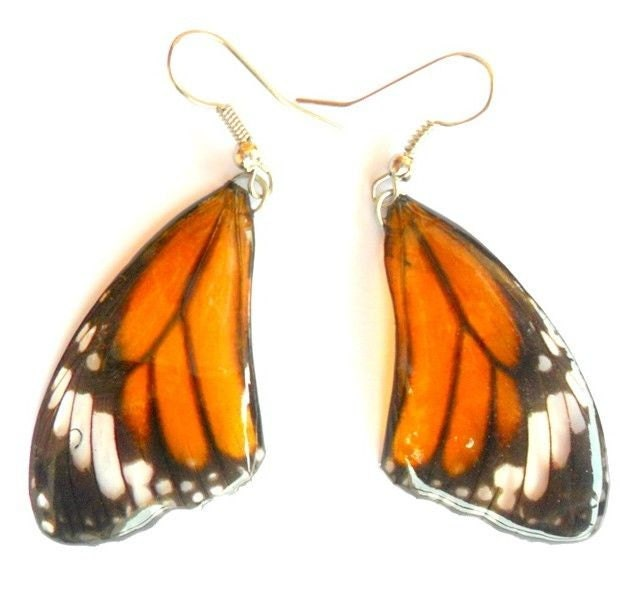 Real Butterfly Wings Earrings Handmade Unsual Color Jewelry
