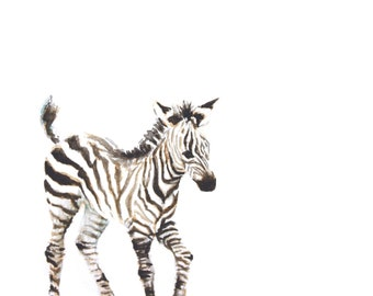 Baby Zebra Watercolor PRINT- Animal Painting - Safari Animal Painting - Zebra Painting - Baby Animal Painting - Zebra - Baby Room - Baby