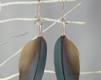 Macaw Feather Earrings