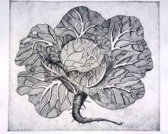 "Etching, hand pulled. Cabbage Fever, 14""x16"""