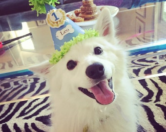 Boy Dog Party Hat- Personalized