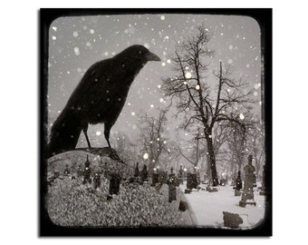 Crow Photograph, Surreal Raven, Gothic Home Decor, Silver Hues, Winter Blackbird Art Print, Rook - Gothic Snow Globe