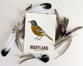 Maryland State Bird, Nature art, Outdoor art, Vintage Map art, Art print, Wall decor, Rustic Nursery, Map prints - BALTIMORE ORIOLE