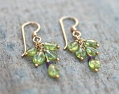 Peridot and Amethyst 14Kt Gold Filled Wire Wrapped Earrings