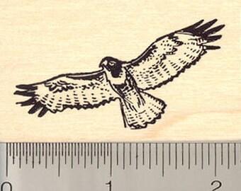 Hawk in Flight Rubber Stamp E11405 Wood Mounted