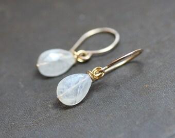 Rainbow Moonstone Earrings Silver or Gold Wire Wapped Earrings Faceted Gemstone Drop Earrings