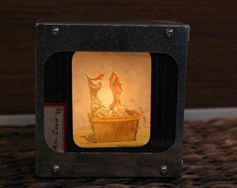 BABY CROWS - Vintage magic lantern glass slide light box