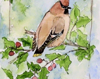 Woodland Bird Watercolor Nature Art Cedar Waxwing Original Artwork Painting