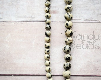 Dalmatian Jasper 4mm OR 6mm OR 8mm Round Beads 15 inch strand