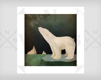 CONSTELLATIONS Polar Bear ILLUSTRATION giclee print SIGNED