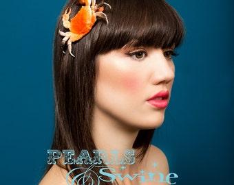 Crab Hair Clip orange glittery fascinator Quirky Tiki Summer Burlesque Hair Accessories nautical fashion accessory