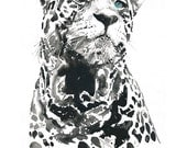 Archival Prints of watercolour painting. Titled  - leopard 3