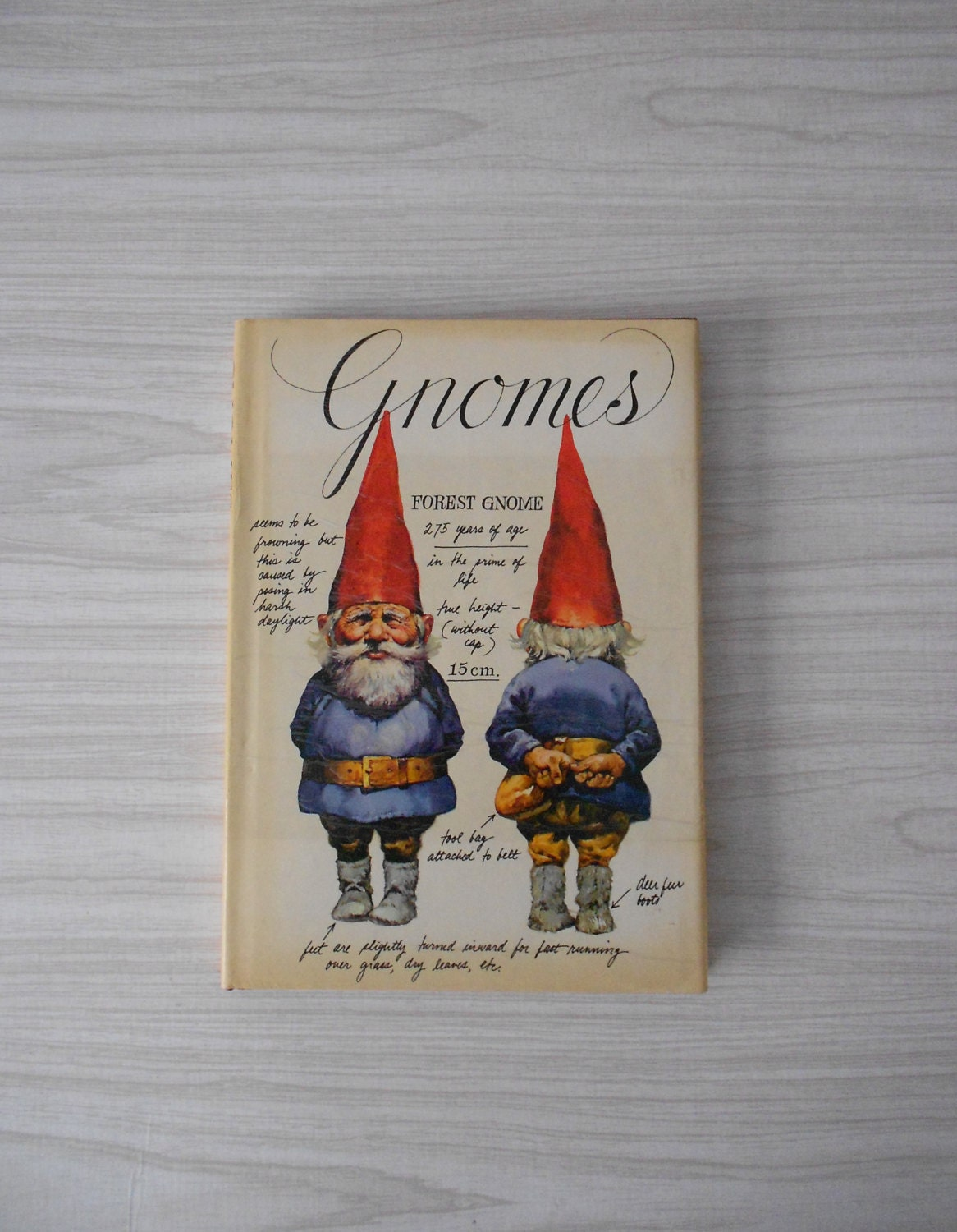 1977 Illustrated GNOMES book published by Harry N. Abrams Fantasy Spirits