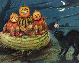 Halloween Card - Vegetable Men Black Cat Goblins - Holiday Greeting Card