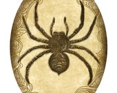Victorian Goth Steampunk Spider - 5x7 Inch Oval - Single Digital Image - Instant Download, Printable, Digital Download
