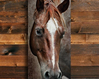 The Roan - Horse photography - Horse art - Red Roan Horse art - Horse canvas - Red Horse art - Red canvas art