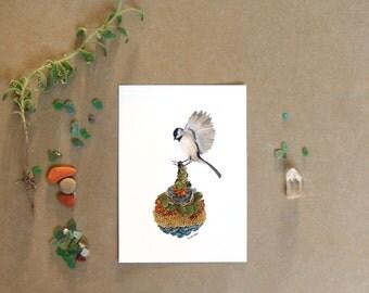 "Quilted Bundle: Bird I  // 5""x7"" Art Print - Forest Illustration"