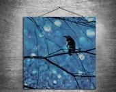 While I Pondered - multiple sizes fine art photo - black bird crow raven Poe blue white bokeh tree square - free U.S. shipping