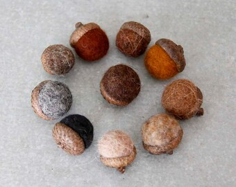 Earth Colored Acorns