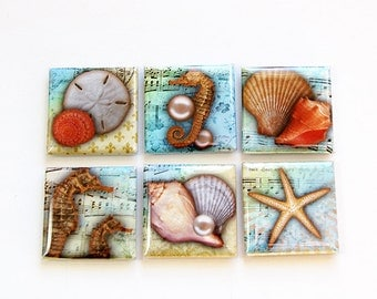 Magnet set, Magnets, Fridge Magnets, Kitchen Magnets, Square Magnets, button magnets, Sea, Beach, Starfish, Seashell, blue, green (4589)