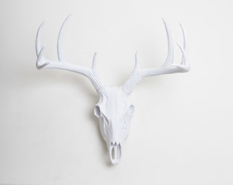 Faux Deer Skull in White - Deer Skull in White- Resin Animal Skull Head by White Faux Taxidermy- Western Decor Stag Skull Hanging Fauxidermy