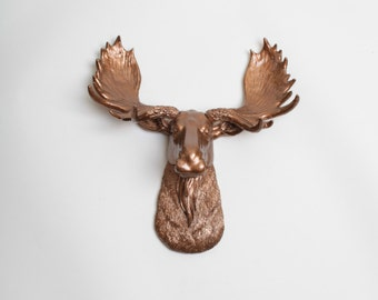 White Faux Taxidermy - The MINI Cola - Faux Moose Head -  Bronze Resin Moose Head- Moose Resin Bronze Faux Taxidermy- Chic & Trendy