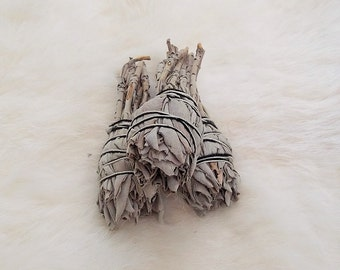 WHITE SAGE SMUDGE Sticks Set Of Three Metaphysical Smudging Tool