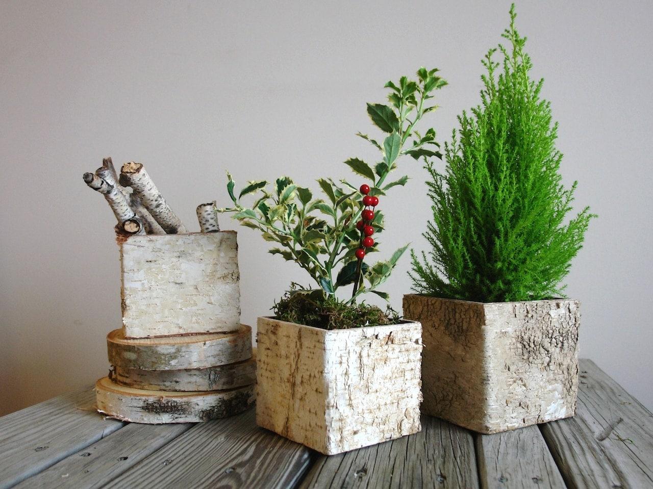 Birch Bark Vases Wood Boxes CHRISTMAS TREE Arrangement Square