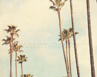 L.A. Palms - Photographic Print - Palm Tree, Los Angeles, California, Bohemian, Eagle Rock, mint green, boho, travel, Wall, Decor, Hanging
