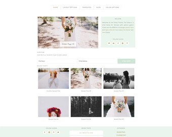 wordpress theme - elissa - mobile responsive wordpress template with custom homepage - DIY INSTANT DOWNLOAD