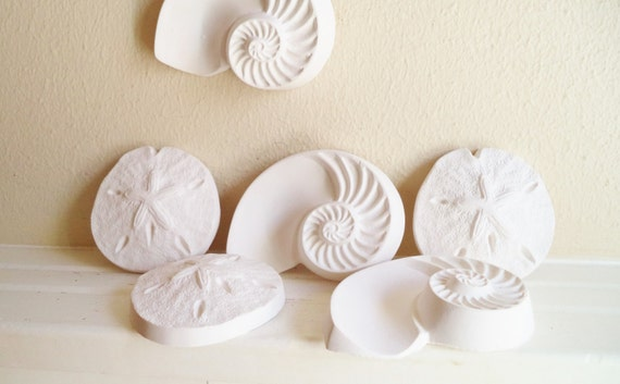 Sea shell wall sculptures, nautical wall decor, sand dollar, nautilus shell, beach house accent