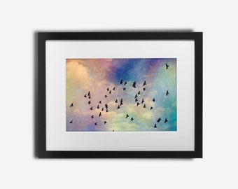 Bird Photography - Bird Wall Art - Bird Wall Decor - Nature Wall Art - Nature Wall Decor - Bird Art - Nature Art - Bird Print
