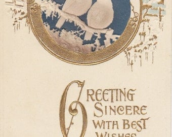 Greeting Sincere- 1900s Antique Postcard- Best Wishes- Happy New Year- Winter Birds- B. B. London- Embossed, Gilded- Paper Ephemera- Used