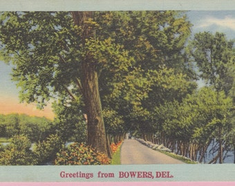 Ca. 1953 Greetings from Bowers, Del. Friendship Greetings Postcard- 647