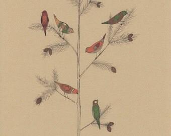 Green, orange and maroon birds in a tree 8x10 art print, bird drawing