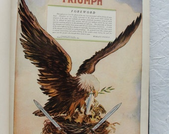 Freedom's Triumph. The Why, When and Where of the European conflict. 1919. Hardcover Book