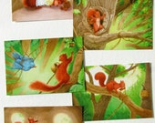 The Squirrel Who Was Afraid Of Heights - Illustrated Postcard Set of 5 Postcards