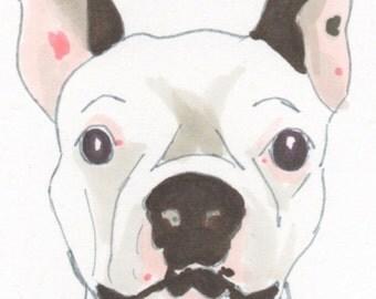Small *Custom* Pet Face Illustration