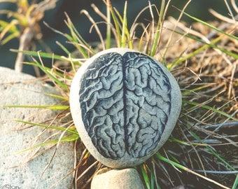 Brain - Brain Gift - Brain Art - Anatomy Gifts - Brain Decor - Funny Gifts - Anatomy Art - Funny Decor - Eco Paperweights - Anatomical Decor