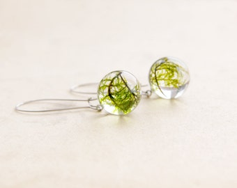 Green moss earrings | Round resin earrings | Resin nature earrings | Real moss nature jewelry | Nature resin jewelry | Round moss earrings