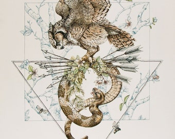 The Oracle and the Diviner- 16 x 20 large art print- bird art- owl illustration
