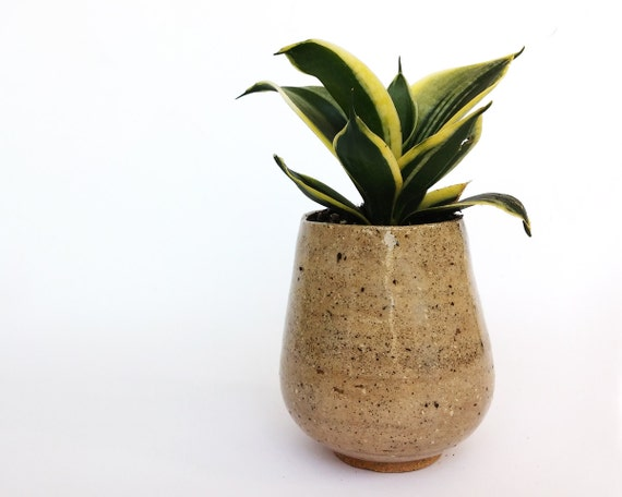 Small Decorative Ceramic Planters Ceramic By Noykiceramics